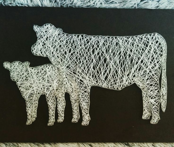 Cow string art by HunGabi