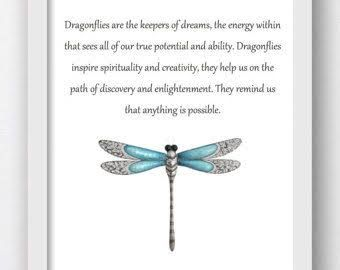Image result for dragonfly quote