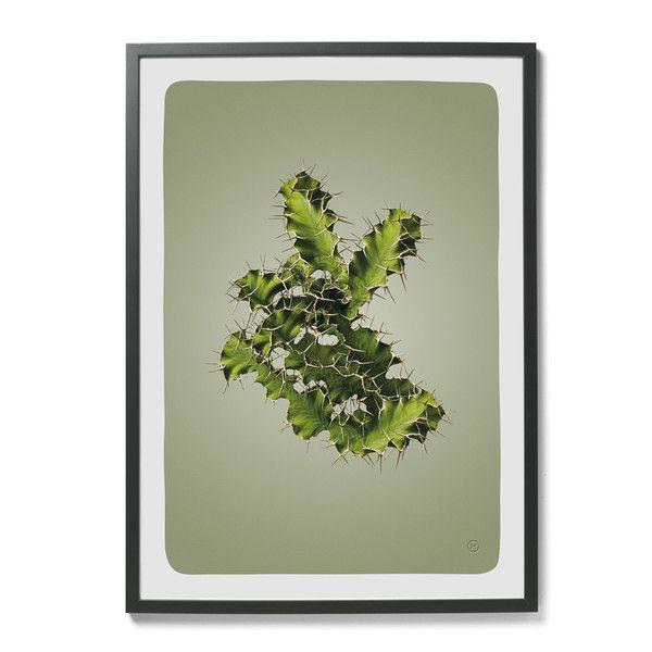 plakat Hagedornhagen-kaktus | Designzoo