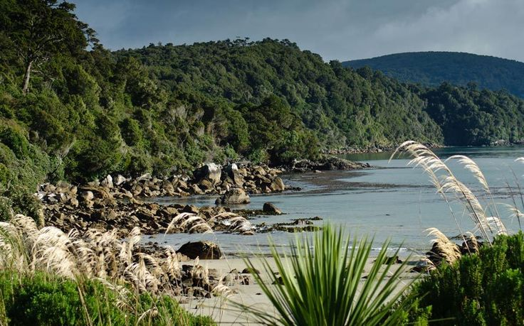 Far-flung Stewart Island is often missed from many New Zealand itineraries. Yet this pristine, windswept wilderness really deserves a closer look
