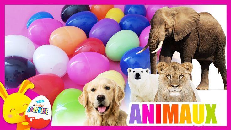 Apprendre les animaux - compétition des couleurs - Oeufs surprises - Tit...