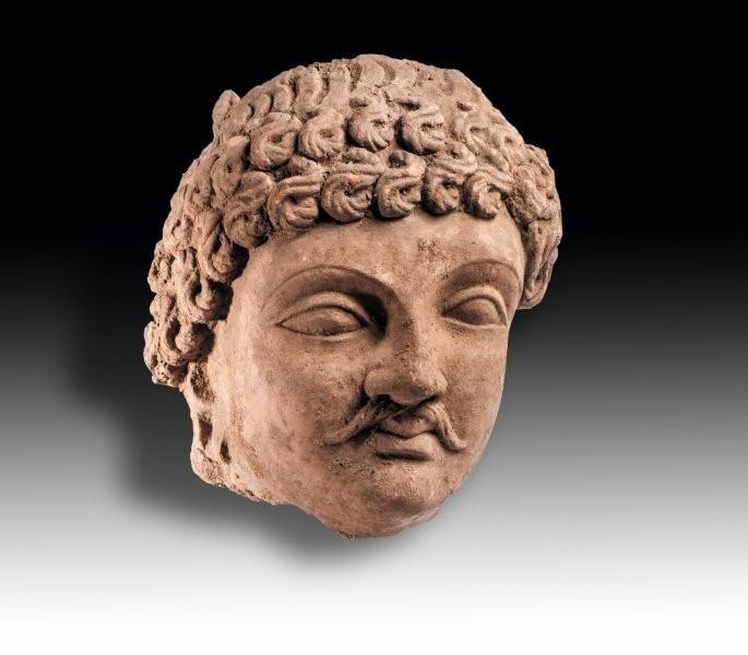 Tête de Bodhisattva moustachu, à la coiffure en courtes mèches ondulées. En terre cuite.  Art-Gréco Bouddhique du Gandhara, Ier – Ve siècle.  Test de thermoluminescence.  H : 32 cm