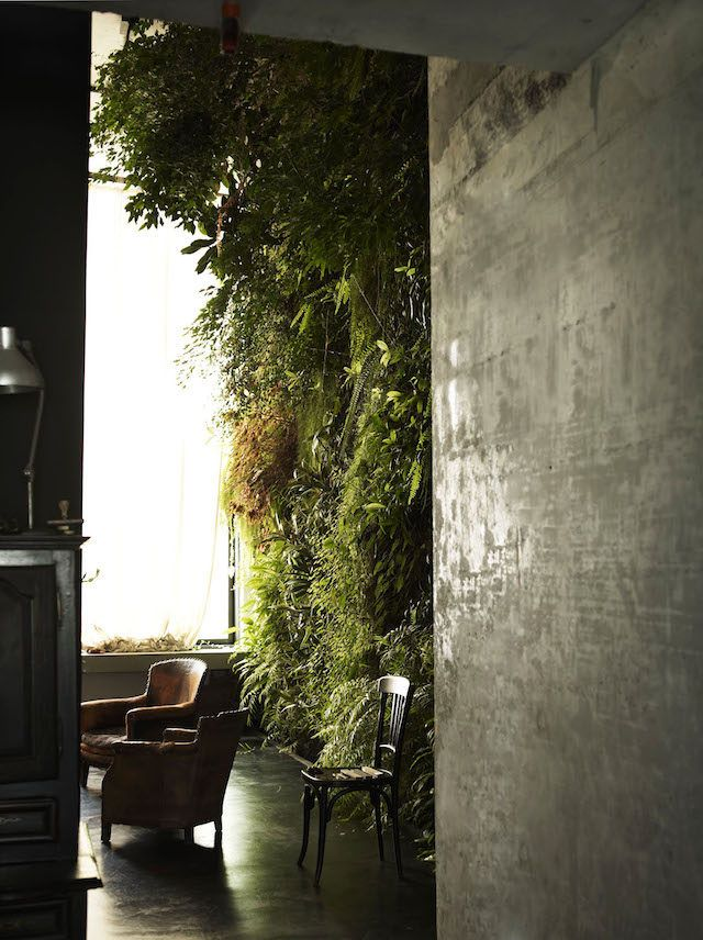 Vertical garden. From The Natural Home by Hans Blomquist. Photo: Debi Treloar.