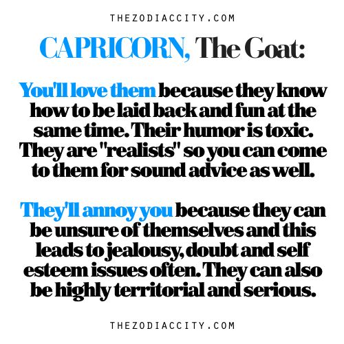 Capricorn: The Goat — Why You'll Love Them & Why They'll Annoy You