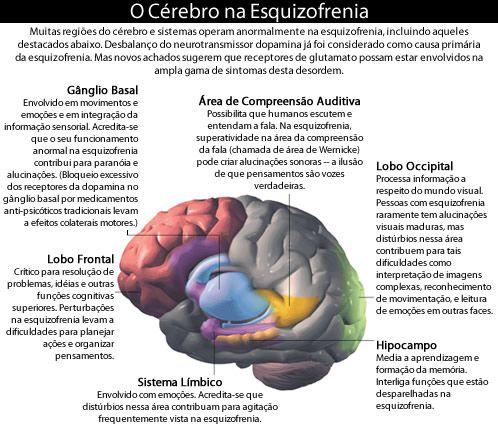 o cérebro na esquizofrenia