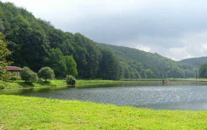 Dolina Będkowska  - 15 minut per pedes od  pola namiotowego Brandysówka, można kupićlub złowić pstrąga.