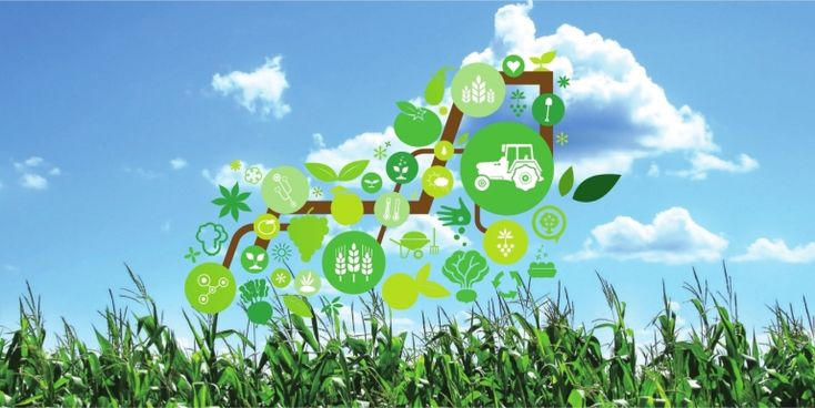 The Internet of Things: Changing the Agriculture Landscape -- To know more, read the blog post :)