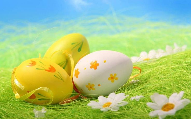 Z okazji Świąt Wielkanocnych 🐣🐥🐤życzymy naszym Klientom i Partnerom Biznesowym, aby ten wyjątkowy czas był pełen wiary, nadziei i miłości, a spotkania w gronie najbliższych upływały w miłym, wiosennym nastroju 🐣🐥🐤😀 http://www.e-cdp.pl/