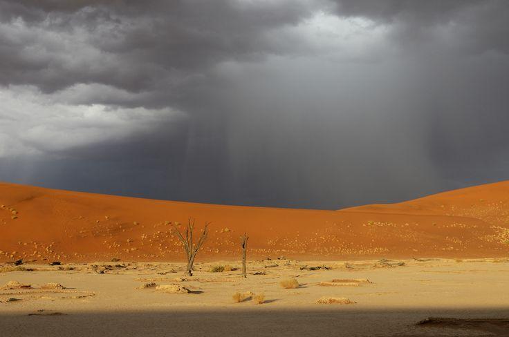 Storm over Dead Vlei, Sand Dunes, Sossusvlei area, Namib Naukluft National Park, Hardap Region, Namibia
