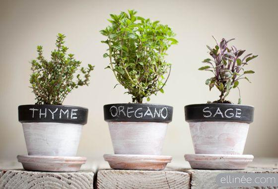 Chalkboard Herb Pots (part 2)