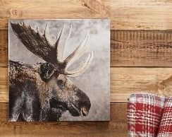 Moose canvas from Next
