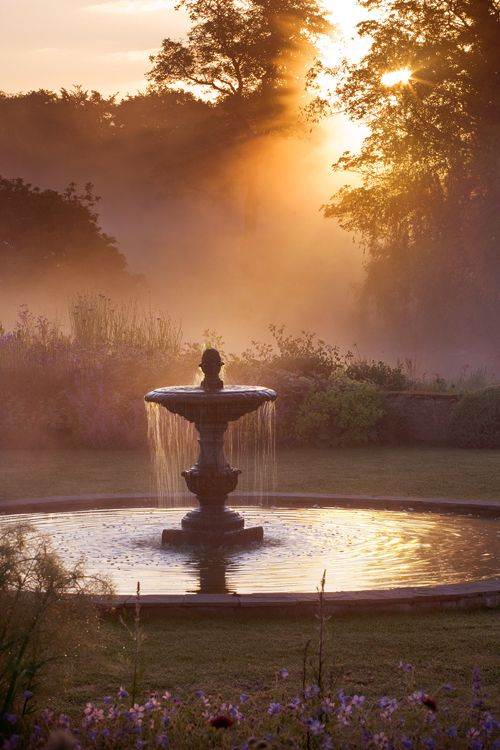 Clive-Nichols-Garden-&-Flower-Photographer. Wonderful lighting - wonder what it looks like at noon?