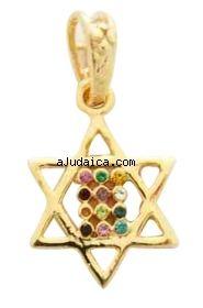 Gold Filled Mini Twelve Tribes Star of David Pendant