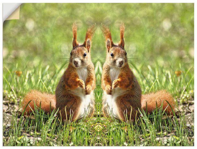 Wandfolie »Kattobello: Rote Eichhörnchen Zwillinge«