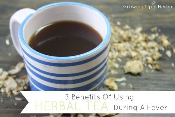 Herbal teas can be helpful during a fever since they stimulate the body, increase sweating and improve hydration. Find out which herbal teas are best during a fever.