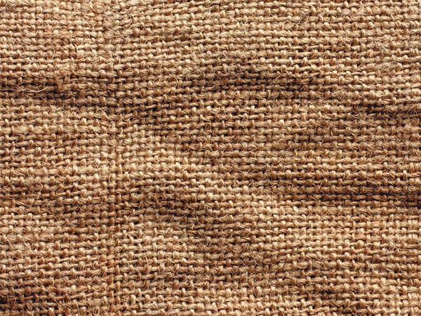 Characteristics of flax | URBANARA UK