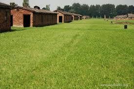 Afbeeldingsresultaat voor auschwitz birkenau latrines