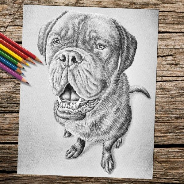 Printable Coloring Page Dog Sitting