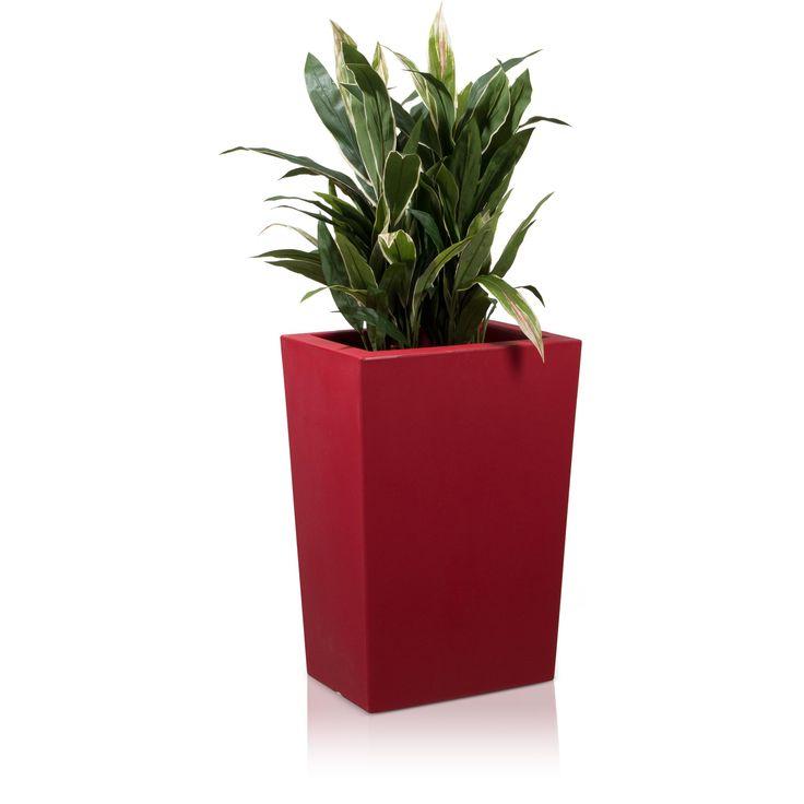 Der Kunststoff-Pflanzkübel LARGO M 70 in mattem Rot eignet sich in Kombination mit einer hohen Bepflanzung optimal als Raumteiler. Auf der heimischen Terrasse lassen sich so optimal Bereiche abtrennen und es können wahre Ruheoasen geschaffen werden. Aber auch in Büroräumen kann der Pflanztrog die Räumlichkeiten strukturieren und einzelne, optisch abgetrennte Bereiche kreieren. Die konische Formgebung schafft genügend Platz für verschiedenste Pflanzen, auch solche mit üppigerem Wurzelwerk.
