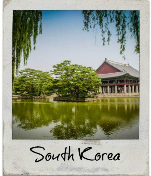 Explore South Korea DESTINATIONS |DIVERGENT TRAVELERS #southkorea #destinations #wildlife #adventure #travel #blogging