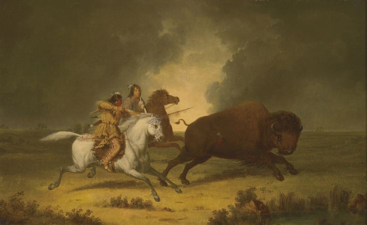 """It seems Paul Kane duplicated many of his oil paintings, which are now being analyzed by ROM curator Ken Lister and paintings conservator Heidi Sobol. """"Running Buffalo,"""" Assiniboine, c. 1849–56, Royal Ontario Museum."""