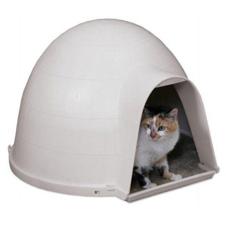 Groovy Petmate 19 Kitty Kat Cat Condo Multicolor Products In Download Free Architecture Designs Embacsunscenecom
