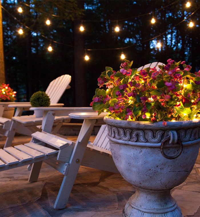 Clear Patio Lights Hanging Overhead And Fairy Lights Illuminate Flower Pots