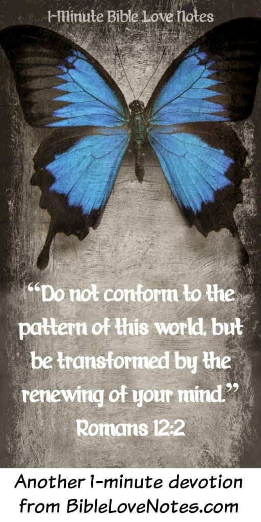 This 1-minute devotion explains how the transformation process works for a Christian.