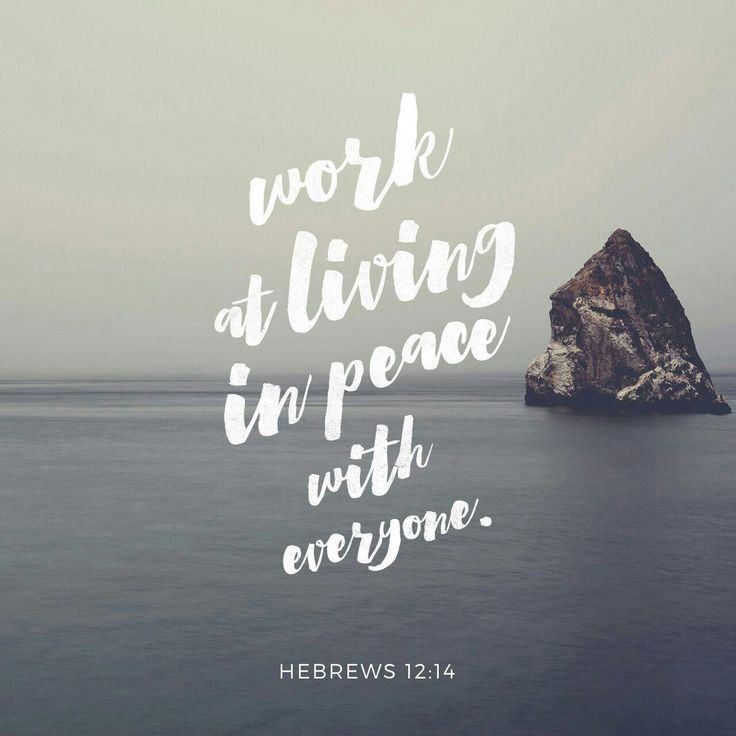Strive for peace with everyone, and for the holiness without which no one will see the Lord. null http://bible.com/59/heb.12.14.ESV