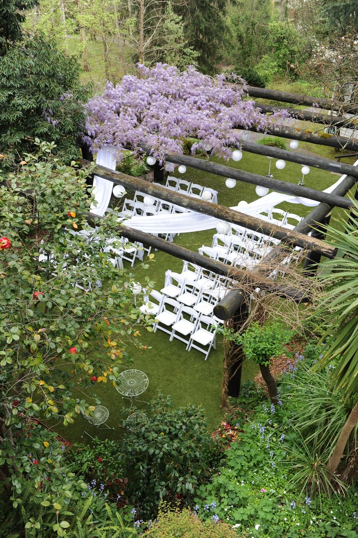 The pergola covered in gorgeous purple wisteria #chateauwyuna #wedding #bride #groom #mrandmrs #weddingreception #ceremony #purple #wisteria #flowers #outdoorceremony #pergolaceremony #pergolawedding #gorgeous #goodweather