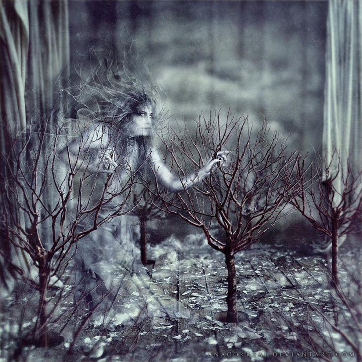 Çok beyazdı tüm hikayeler ilk bakışların buğularında, gözlerinde uykulu yalnızlıkların çapaklarını ovuştururken aynada gördüğü o periymiş aşk denen. sonraları kararmış bir sonbahar sağanağı türlü zorluklarla, perdeler çekilip gözlerinden, yüzünden gamzeler değil yaşlar dökülmüş. her aşk, biraz beyaz biraz siyah; griymiş.. - Meo #meoedebiyat #aforizma #aforizmalar #aşk #edebiyat #edebiyatblogu #kafkaokur #edebiyatdünyası #meo #alıntı #özlüsözler