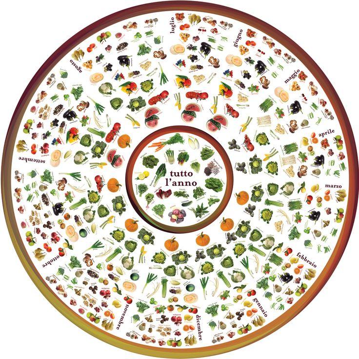 Vi propongo in questa pagina la ruota della stagionalità delle verdure. Rispettare la ruota della stagionalità permetterà di potersi gustare verdure più genuine ideale per la salute, più buone e gustose toccasana per il palato e anche più economiche che visti i tempi è un ottimo risultato!