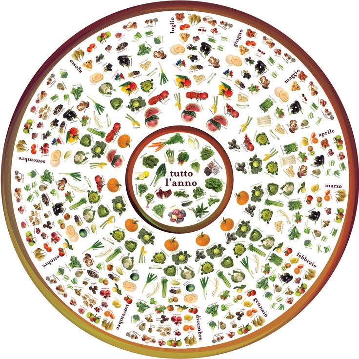 La ruota delle stagioni (The Wheel of Seasons) Did you ever wonder if the fruits and vegetable you are buying are seasonal or not?