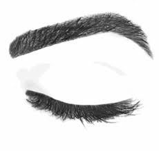 Image result for eyebrows drawing