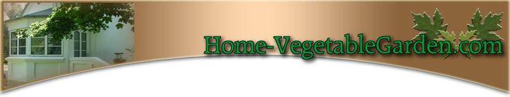 Homemade Garden Fertilizers