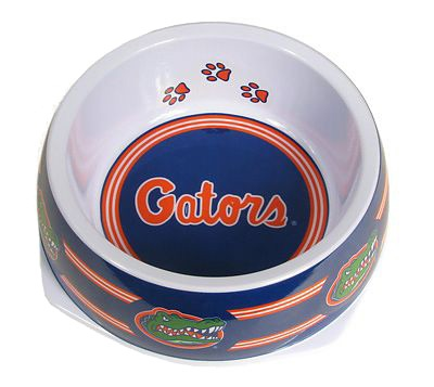 Florida Gators Dog Bowl! Might as well! She already has a Gator Dog Bed in her kennel!!!