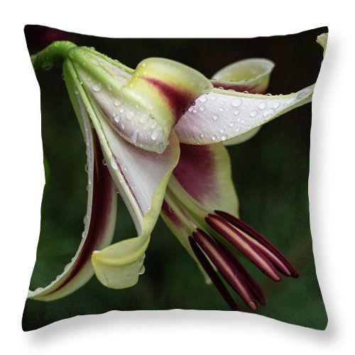 Natalya Antropova Throw Pillow featuring the photograph Beauty Washed by Natalya Antropova #NatalyaAntropovaFineArtPhotography#ArtDecor#HomeDecor#pillow