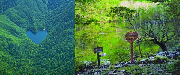 豊似湖・・・ハートレイクと呼ばれ、最近注目を集めている周囲約1kmほどの豊似湖(とよにこ)をご存知ですか?襟裳岬の18km北、日高山脈襟裳国定公園内にある唯一の自然湖で、周囲を原生林に囲まれた湖面は、上空から見ると緑の中にコバルトブルーのハートが輝いていているような神秘的な光景を見ることができます。 また、湖に行くまでに通る黄金道路(国道336号の一部区間で名称の由来は、黄金を敷き詰めるほど多額の費用がかかったからだそう)と呼ばれる道も絶景を堪能できるのでおすすめです。そして豊似湖まで行くことはできますが、今のところ展望台などはなくハートの形を自分の目で確認するのは、残念ながらできません。