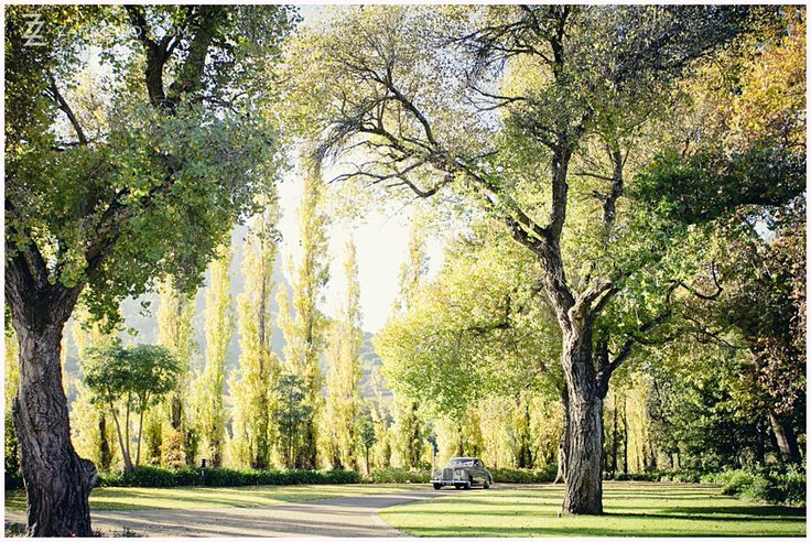 Molenvliet Wine and Guest Estate is one of the top 10 #weddingvenues in #CapeTown.  Read our full venue review on the ZaraZoo Blog http://www.zara-zoo.com/blog/molenvliet-venue-review/