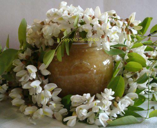 Marmellata di fiori d'acacia --Ing. per un barattolino -200 gr di Petali di fiori d'acacia; -180 gr di zucchero; -200 gr di acqua; -1/2 mela; -1/2 limone. -staccare i petali --tagliare la mela, metterla in pentola con 200 gr di acq. e il succo del lim. -Portare a cottura, frullare  -Unire lo z. cucinare fino a quando si sarà ridotto ed inizierà a caramellare. --unire i petali dei fiori e, cuocere per circa 5/6 minuti.  --frullate ancora il tutto. Continuare cottura fino a giusta densità.