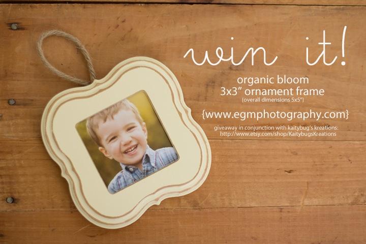 Organic Bloom Frames Giveaway, Organic Bloom Ornaments http://www.egmphotography.com/archives/organic-bloom-frame-giveaway-organic-bloom-frames-vendor/