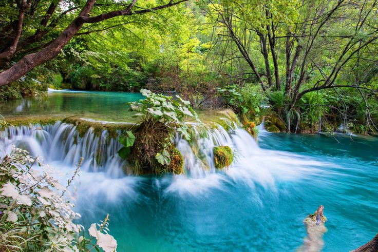 Las, Rzeka, Wodospad