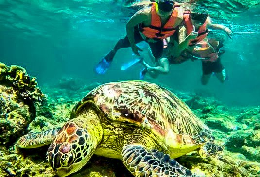 I Travelled 4 Days in Dumaguete, Oslob and Siquijor for Only PHP 5,827 (All-In)