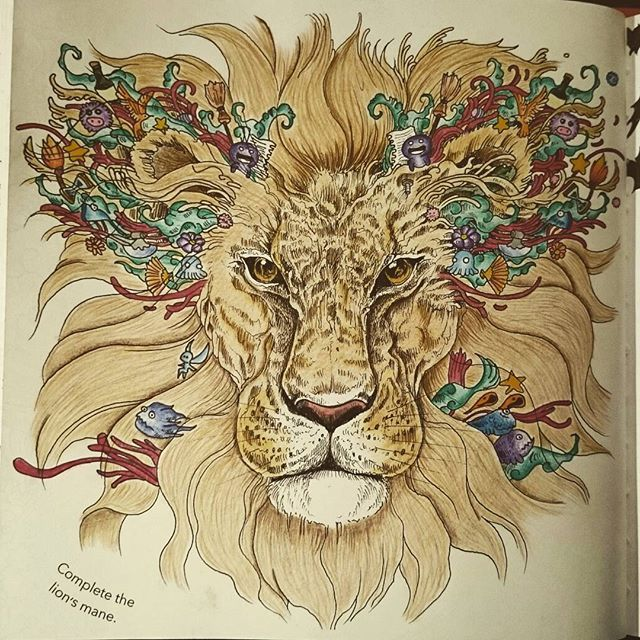 480 Best Adult Coloring Book Images On Pinterest