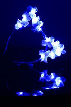 Blue LED Light Up Flower Cat Ears Headband, Cat Headband, Kitty Ears Headband