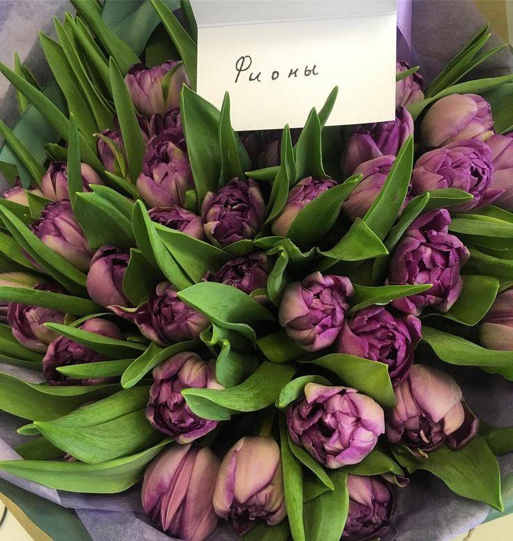 Когда мужчина - сокровище �� @nofunplz и рабочий день сделал прекрасным, и рассмешил до слёз �� Чудесные фиолетовые тюльпаны - ФИОНЫ))) #урацветы #фионы #flowerslovers http://gelinshop.com/ipost/1523198493811671917/?code=BUjfPW6DgNt