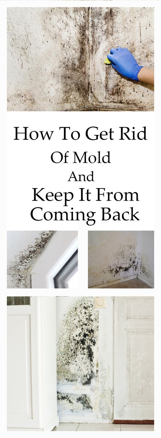 21 best home mold yuk images on pinterest cleaning - Getting rid of black mold in bathroom ...