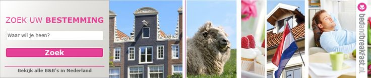 Bed & breakfasts waar je huisdier ook welkom is | Bed & Breakfast Blog | Bedandbreakfast.nl | B&B-tips en nieuwsBed & Breakfast Blog | Bedan...