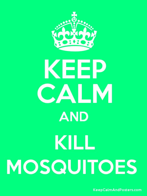Keep Calm and KILL MOSQUITOES