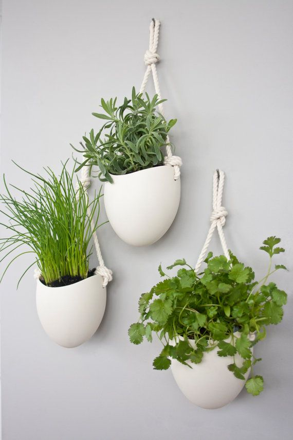 set of 3 porcelain and cotton rope hanging planters from etsy.com. Outside during summer, take them inside in the fall